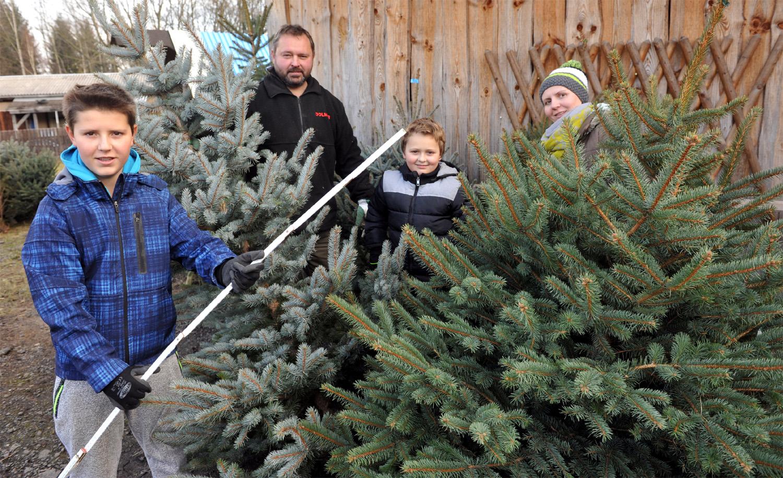 Weihnachtsbaum Kaufen Chemnitz.Auf Und Holt Euren Weihnachtsbaum Erzgebirge Tv Die Heimat Sehen